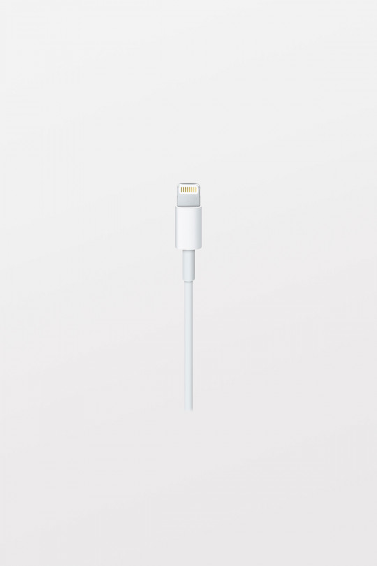 Apple Lightning to USB-C Cable - 1m