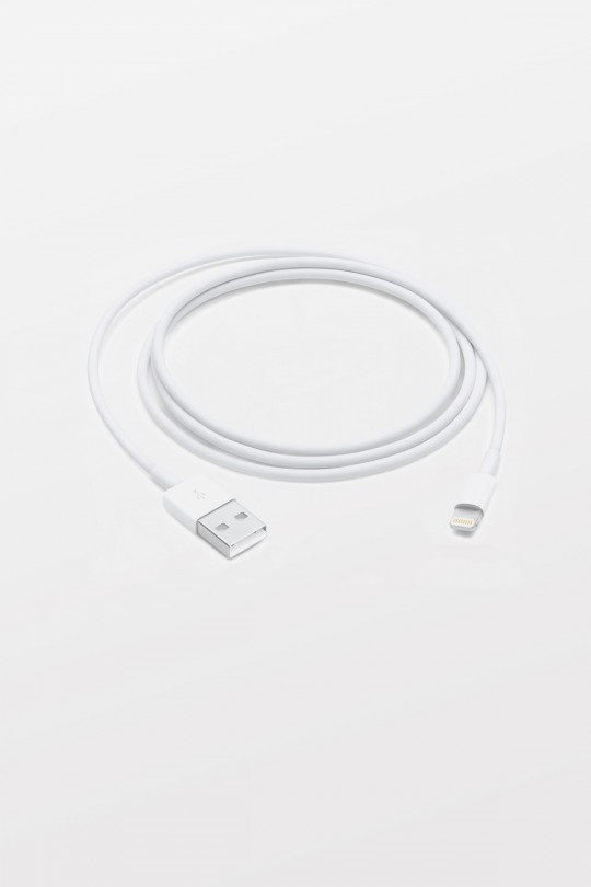 Apple Lightning to USB Cable (1.0m)