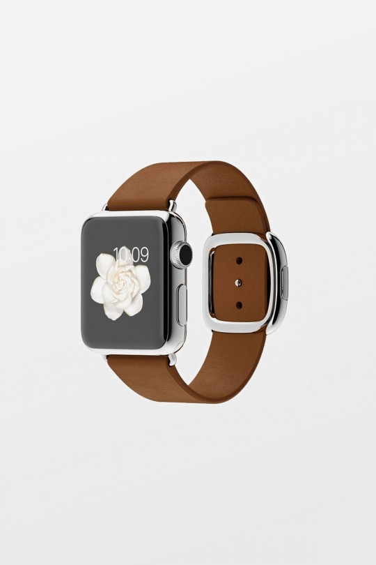 Apple 38mm Stainless Steel Brown Modern Buckle - Medium